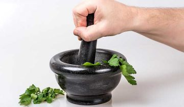 Discovering Healing Herbs To Improve Your Health