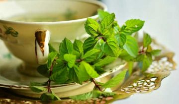 Natural Remedies For Common Health Problems