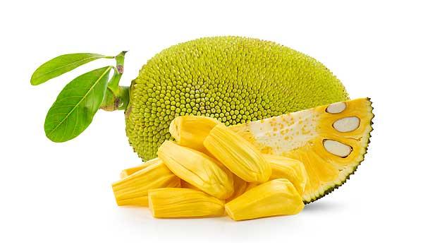 Yummy Jackfruit Recipes For Vegans