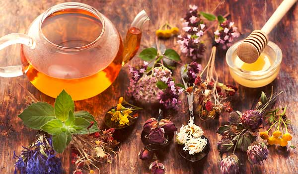 Is Herbal Medicine Nature's Answer To Healing?